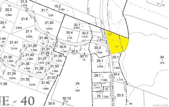 State Route 42, Neversink, NY 12765 (MLS #H6076162) :: William Raveis Baer & McIntosh