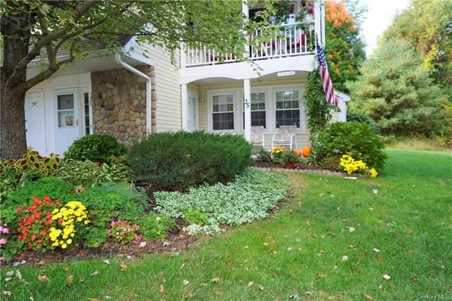 35 Millholland Drive W, Fishkill, NY 12524 (MLS #H6076178) :: William Raveis Baer & McIntosh