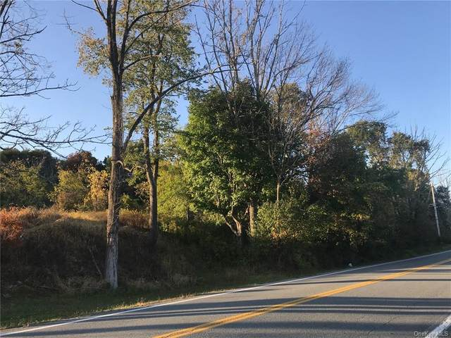 County Hwy 35, Middletown, NY 10940 (MLS #H6076180) :: Frank Schiavone with William Raveis Real Estate