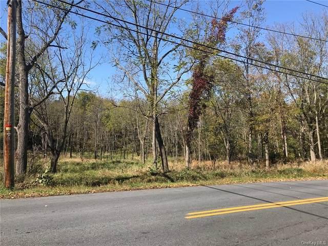 16 Knoell Road, Goshen, NY 10924 (MLS #H6076181) :: Nicole Burke, MBA | Charles Rutenberg Realty