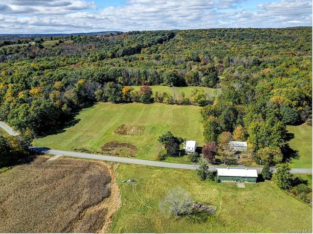 207 S Plank Road, Westtown, NY 10998 (MLS #H6076210) :: Kendall Group Real Estate | Keller Williams