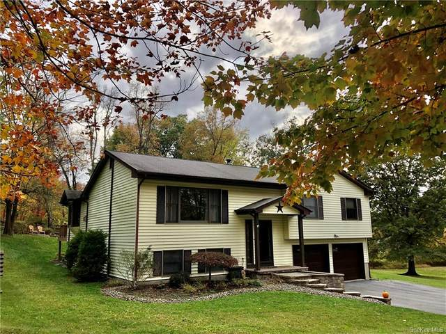 7 Little Lane, Walden, NY 12586 (MLS #H6076217) :: Frank Schiavone with William Raveis Real Estate