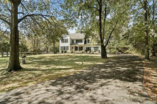 3 Kristen Leah Lane, Salisbury Mills, NY 12577 (MLS #H6076298) :: Nicole Burke, MBA | Charles Rutenberg Realty