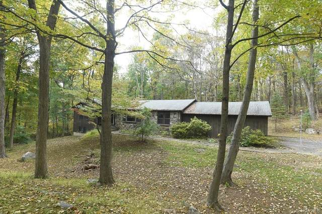 49 Maple Wood Drive, Brewster, NY 10509 (MLS #H6076301) :: Kendall Group Real Estate | Keller Williams