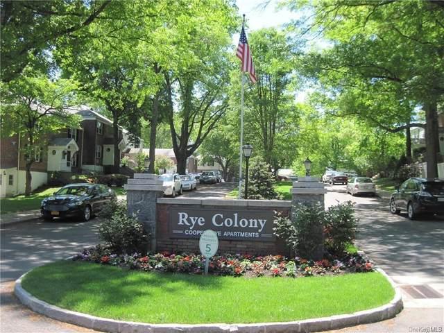 2 Peck Avenue 215A, Rye, NY 10580 (MLS #H6076525) :: Nicole Burke, MBA | Charles Rutenberg Realty
