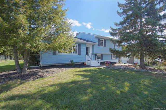 40 Capital Drive, Washingtonville, NY 10992 (MLS #H6076533) :: Frank Schiavone with William Raveis Real Estate