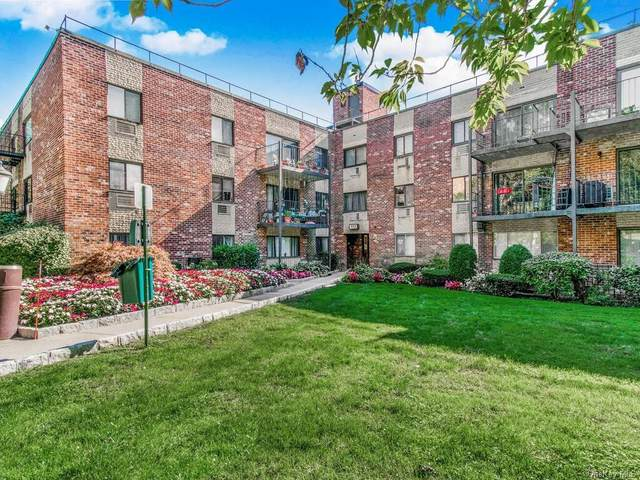 117 Dehaven Drive #343, Yonkers, NY 10703 (MLS #H6076553) :: Cronin & Company Real Estate