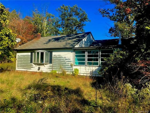 44 Greenwood Road S, Wurtsboro, NY 12790 (MLS #H6076600) :: William Raveis Baer & McIntosh