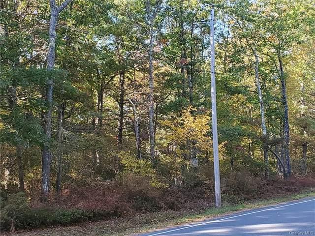 Lot 77 Forestburgh Road, Glen Spey, NY 12737 (MLS #H6076629) :: Kendall Group Real Estate | Keller Williams