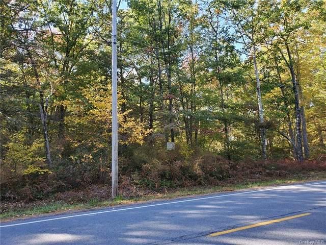 Lot 78 Forestburgh Road, Glen Spey, NY 12737 (MLS #H6076634) :: Kendall Group Real Estate | Keller Williams