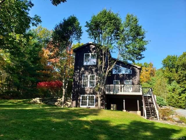736 Forestburgh Road, Glen Spey, NY 12737 (MLS #H6076638) :: Kendall Group Real Estate | Keller Williams