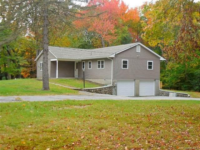 60 Basel Road, Pine Bush, NY 12566 (MLS #H6076639) :: Kendall Group Real Estate | Keller Williams