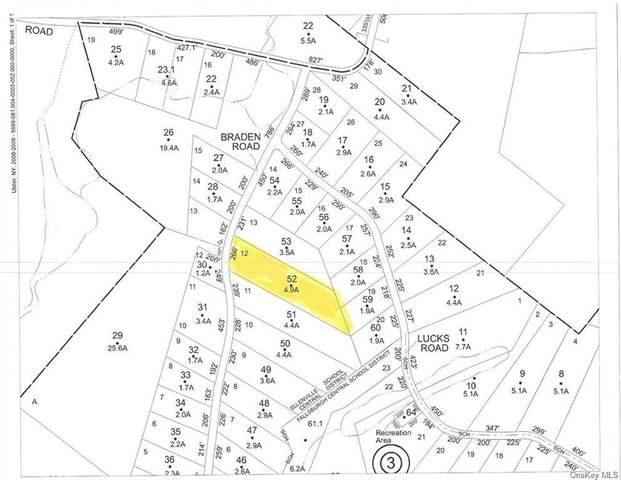 Braden Road, Mountain Dale, NY 12763 (MLS #H6076674) :: William Raveis Baer & McIntosh
