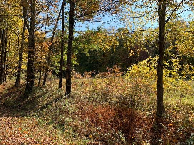 Huff Road, Jeffersonville, NY 12748 (MLS #H6076757) :: Kendall Group Real Estate | Keller Williams
