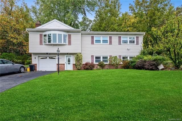 91 Margaret Keahon Drive, Pearl River, NY 10965 (MLS #H6076758) :: Nicole Burke, MBA   Charles Rutenberg Realty