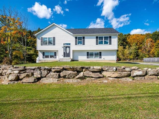 765 Roosa Gap Road, Bloomingburg, NY 12721 (MLS #H6076761) :: William Raveis Baer & McIntosh