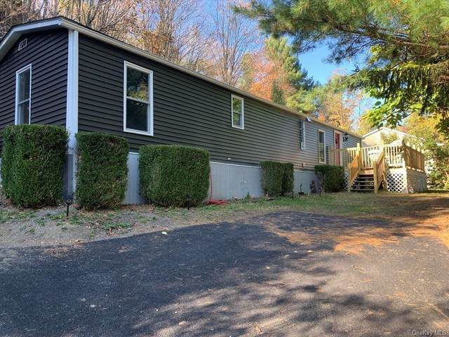 319 Old Kingston Road, New Paltz, NY 12561 (MLS #H6076774) :: William Raveis Baer & McIntosh