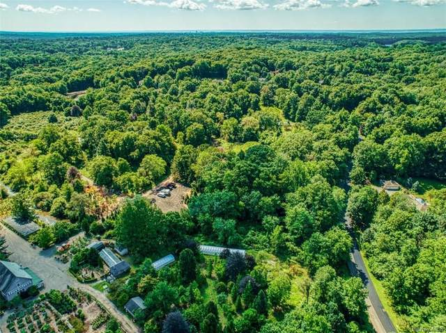 111 Round Hill Road, Armonk, NY 10540 (MLS #H6076856) :: Kendall Group Real Estate   Keller Williams