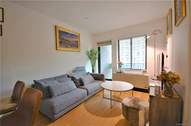 353 E 104th Street 3D, Newyork, NY 10029 (MLS #H6076873) :: Mark Seiden Real Estate Team