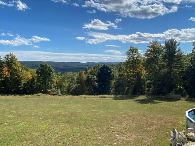 150 Brandt Road, Westbrookville, NY 12729 (MLS #H6076882) :: William Raveis Baer & McIntosh