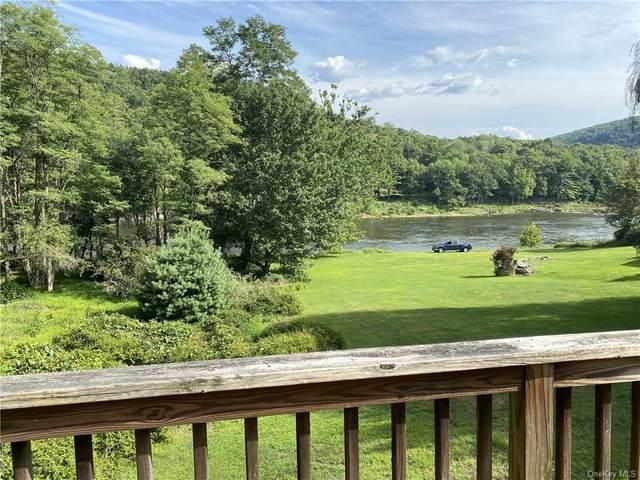 100 River View Lane, Shohola, PA 18458 (MLS #H6076945) :: Frank Schiavone with William Raveis Real Estate