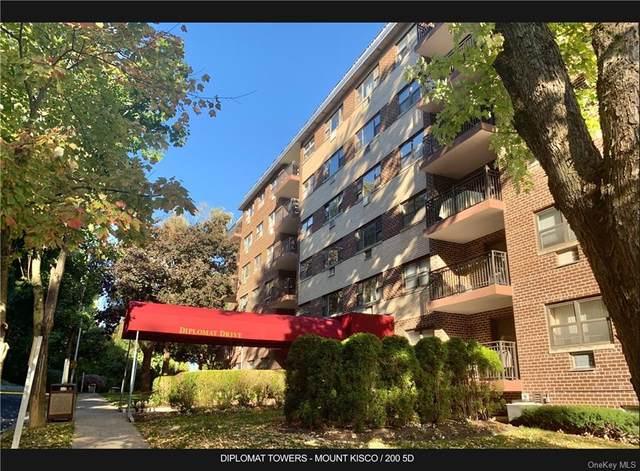200 Diplomat Drive 5D, Mount Kisco, NY 10549 (MLS #H6077050) :: Nicole Burke, MBA   Charles Rutenberg Realty