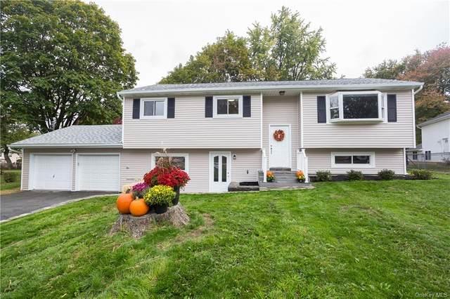 7 Martin, Poughkeepsie, NY 12601 (MLS #H6077160) :: The Home Team