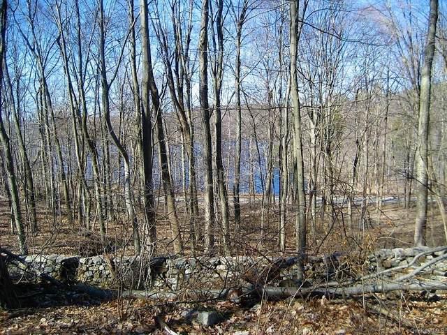 0 Reservoir Road, Brewster, NY 10509 (MLS #H6077227) :: Kendall Group Real Estate | Keller Williams