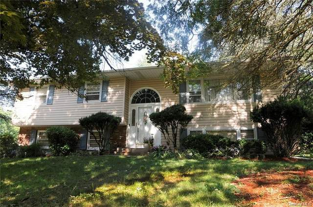 35 Eastbourne Drive, Spring Valley, NY 10977 (MLS #H6077291) :: Nicole Burke, MBA | Charles Rutenberg Realty