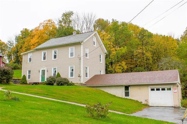 18 Scott Aldrich Lane, Westtown, NY 10998 (MLS #H6077316) :: Kendall Group Real Estate | Keller Williams