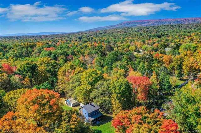 463 Awosting Road, Pine Bush, NY 12566 (MLS #H6077331) :: Kendall Group Real Estate | Keller Williams