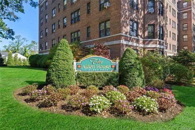 11 Alden Road 3H, Larchmont, NY 10538 (MLS #H6077364) :: William Raveis Baer & McIntosh
