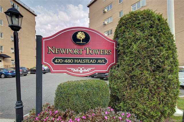 480 Halstead Avenue 5A, Harrison, NY 10528 (MLS #H6077461) :: William Raveis Baer & McIntosh