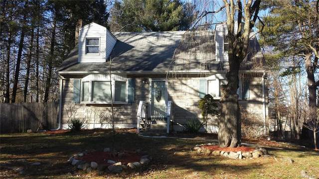 20 Pascack Road, Pearl River, NY 10965 (MLS #H6077488) :: William Raveis Baer & McIntosh