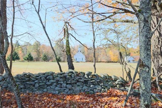 N/A Beaverkill Road, Livingston Manor, NY 12758 (MLS #H6077491) :: McAteer & Will Estates | Keller Williams Real Estate