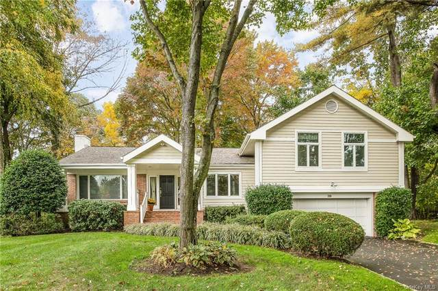 39 Mohegan Lane, Rye Brook, NY 10573 (MLS #H6077502) :: William Raveis Baer & McIntosh