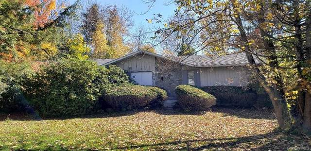 45 Delaware Avenue, Liberty, NY 12754 (MLS #H6077519) :: William Raveis Baer & McIntosh
