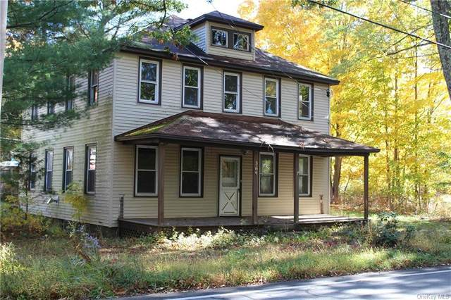 364 State Route 55, Napanoch, NY 12458 (MLS #H6077525) :: William Raveis Baer & McIntosh