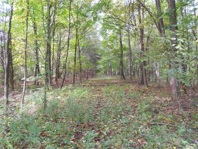 2150 Route 32, Modena, NY 12548 (MLS #H6077550) :: Signature Premier Properties