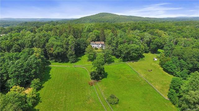 2728 Route 44, Millbrook, NY 12545 (MLS #H6077572) :: William Raveis Baer & McIntosh