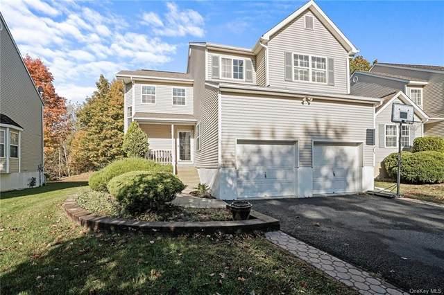 3 Alexander Drive, Washingtonville, NY 10992 (MLS #H6077612) :: William Raveis Baer & McIntosh