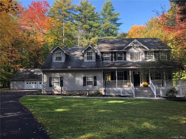 151 Dubois Street, Pine Bush, NY 12566 (MLS #H6077665) :: Kendall Group Real Estate | Keller Williams