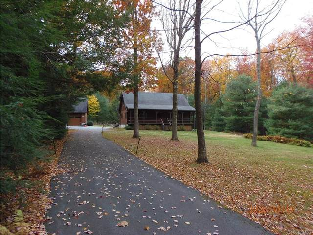691 Peenpack Trail, Sparrowbush, NY 12780 (MLS #H6077695) :: William Raveis Baer & McIntosh
