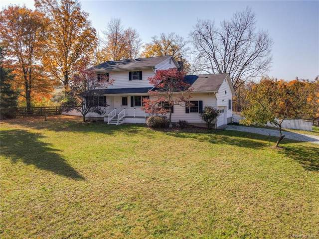 19 Reilly Road, Chester, NY 10918 (MLS #H6077701) :: William Raveis Baer & McIntosh