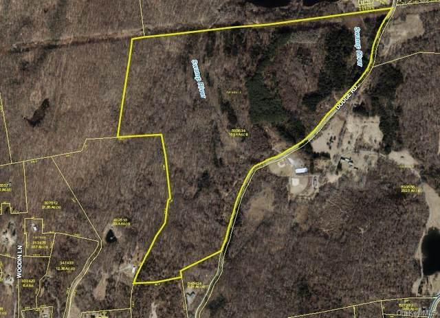 35 Dodge Road, Pawling, NY 12564 (MLS #H6077930) :: Nicole Burke, MBA | Charles Rutenberg Realty