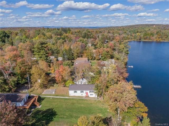 451 Sackett Lake Road, Monticello, NY 12701 (MLS #H6078016) :: Nicole Burke, MBA   Charles Rutenberg Realty