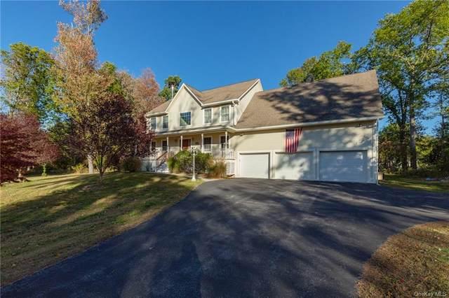 11 Lilac Lane, Fishkill, NY 12524 (MLS #H6078043) :: Nicole Burke, MBA | Charles Rutenberg Realty