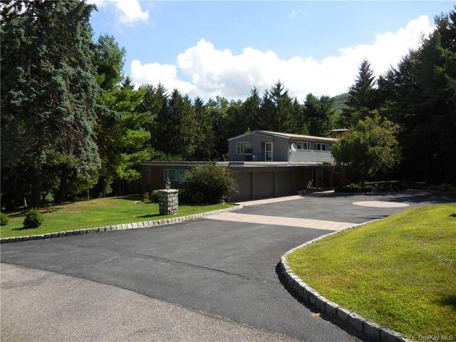 1 Stillwood Road, Cornwall On Hudson, NY 12520 (MLS #H6078091) :: William Raveis Baer & McIntosh