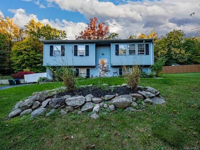 285 Riley Road, New Windsor, NY 12553 (MLS #H6078176) :: Kevin Kalyan Realty, Inc.