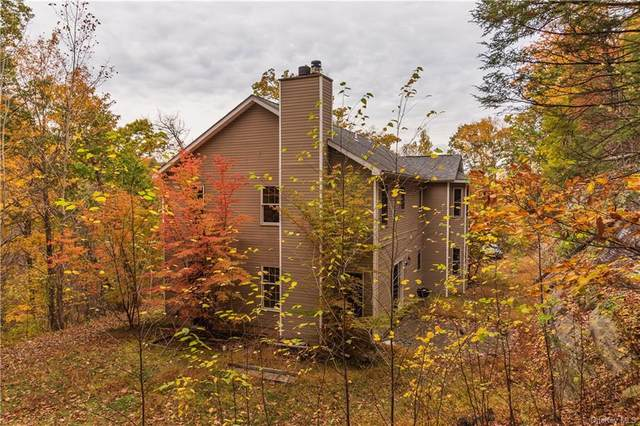 227 Lily Lake Road, Highland, NY 12528 (MLS #H6078211) :: Barbara Carter Team